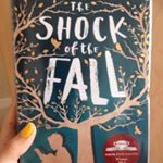 'The Shock of the Fall' by Nathan Filer