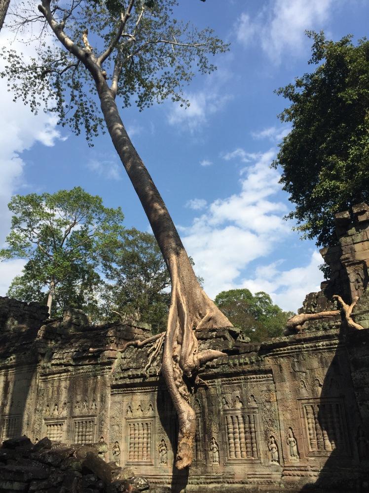 Ta Som, Angkor Wat, Cambodia