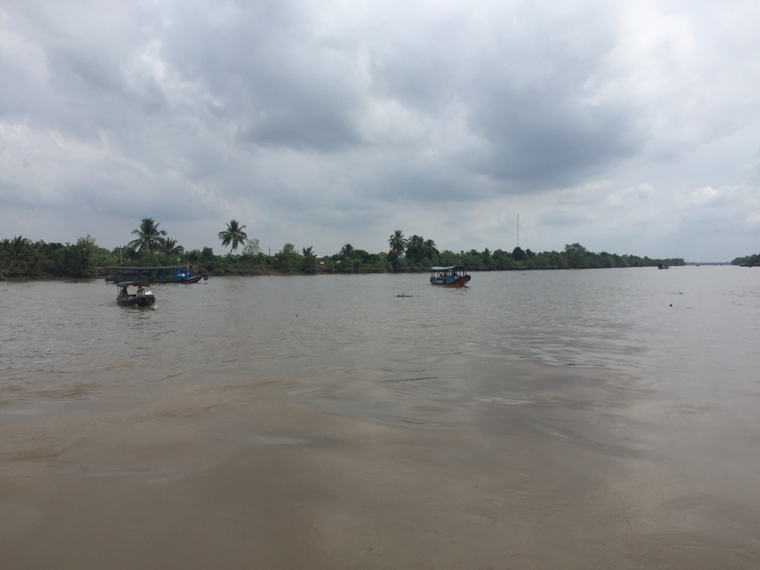 The Mekong Delta, Vietnam