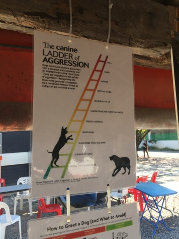 Canine Ladder of Aggression