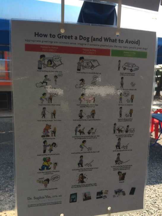 How to greet a dog poster in Soi Dog Foundation Phuket