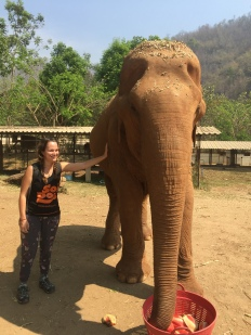 girl next to elephant in Chiang Mai