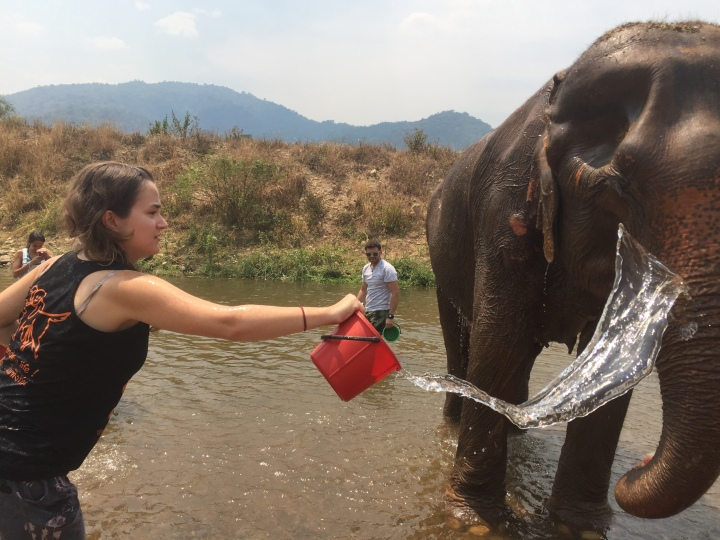 girl throwing water over elephant in river